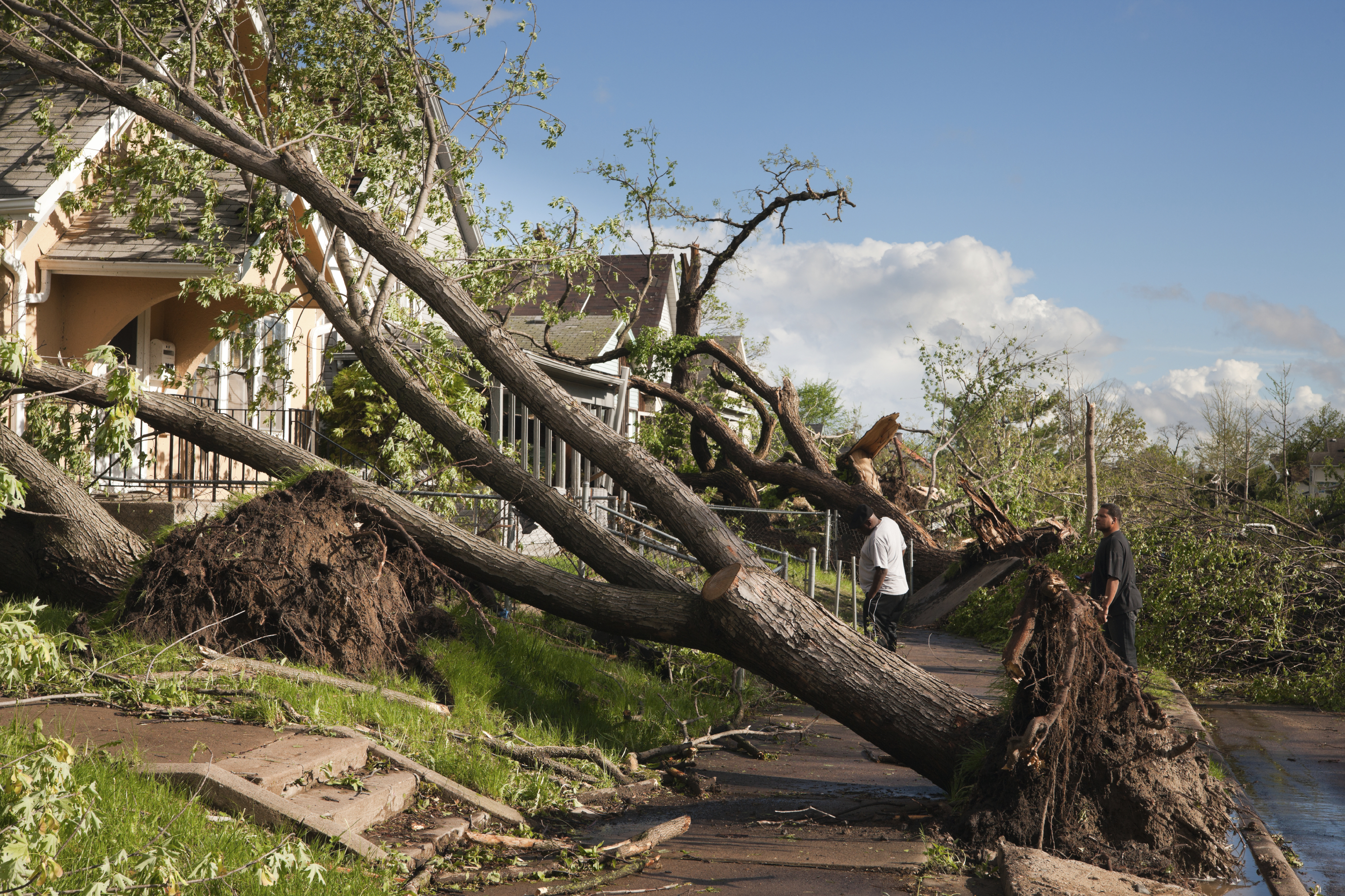 image of a tree uprooted and laying across the front yard within a block of homes