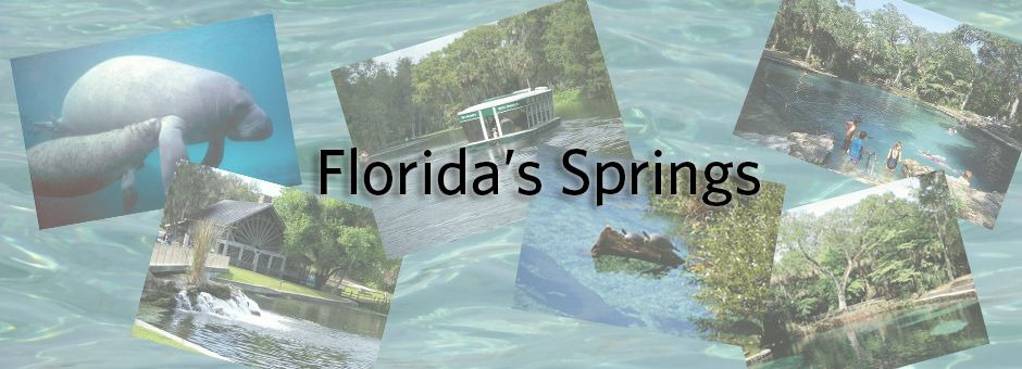 Swimming, boating, and manatees in Florida's Springs