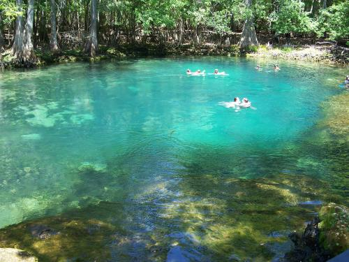 Madison Blue Springs swimming hole